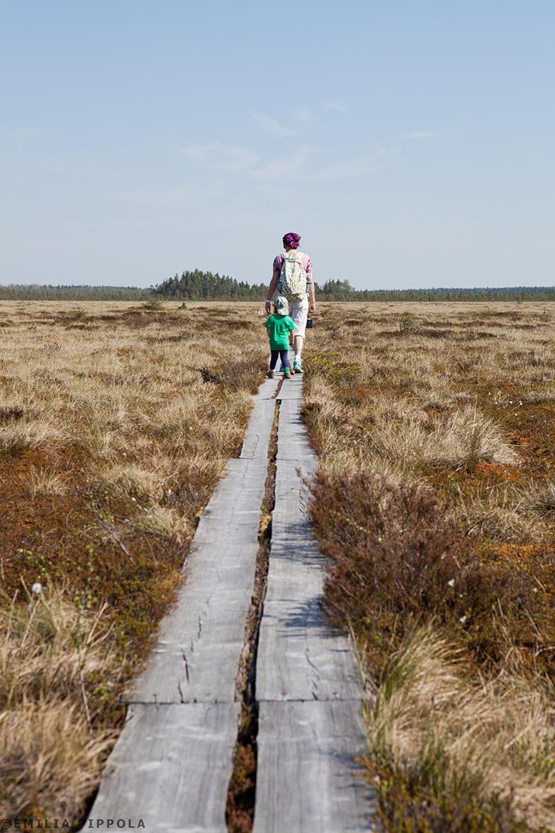 Päiväretki Levanevan luonnonsuojelualueelle.