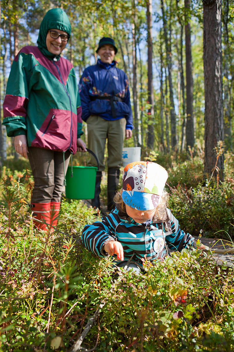 Lasten luontopolku, Salamajärven kansallispuisto